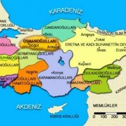 Anadolu'da Kurulan İlk Türk Beylikleri.jpeg